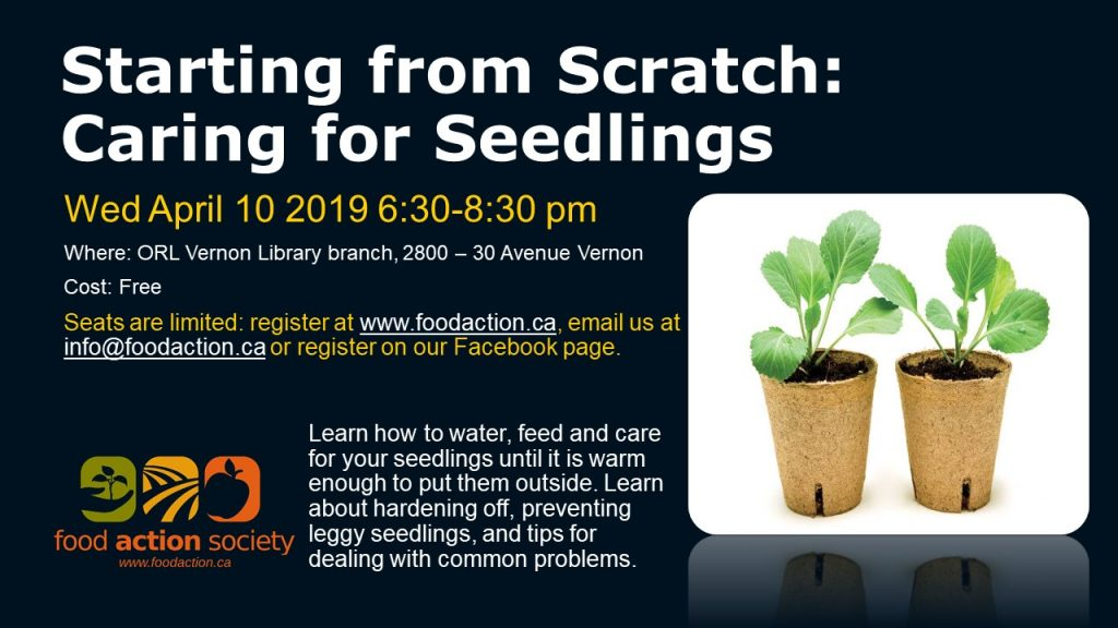 Starting from Scratch: Caring for Seedlings @ Vernon ORL